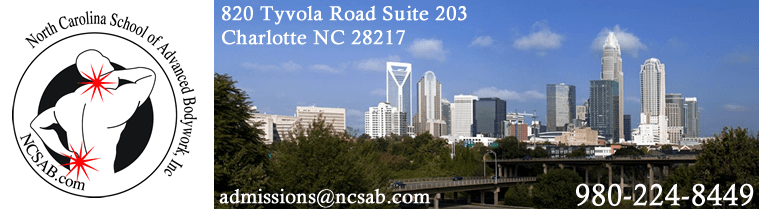 Charlotte Skyline - Clinical / Medical Massage Therapy School in Charlotte, North Carolina